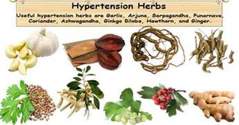 wiccan herbs for high blood pressure picture 12