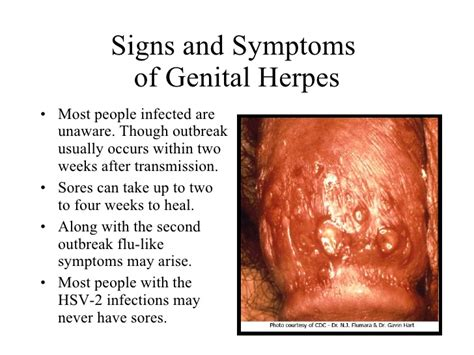 will herpes spread during picture 5