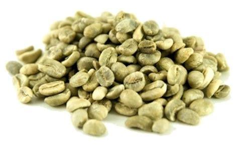 green brans coffe in italia picture 11