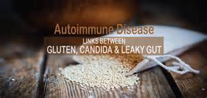 candida loves thyroid medicine picture 5