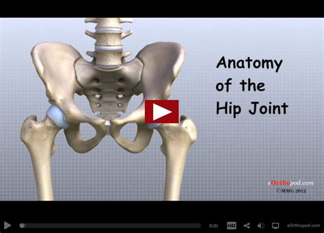 advances in hip pain relief picture 11