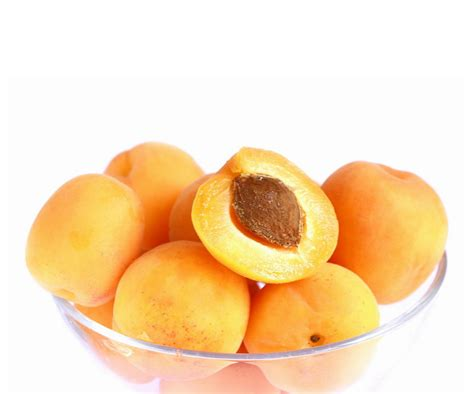 apricots health picture 19