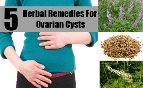 herbal remedies for barthalon cyst picture 3