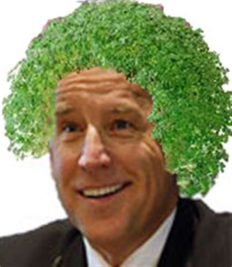 chia pet for baldness picture 2