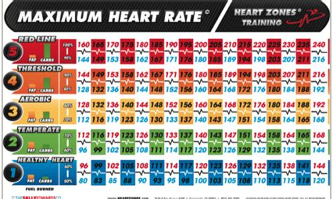 calculate fat burning heart rate picture 13