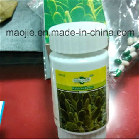 hoodia gordonii quick weight loss product diet pill picture 4