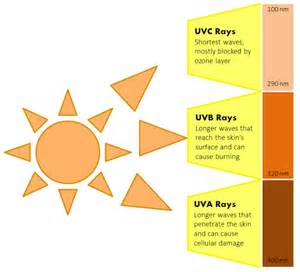 can ultraviolet light cause skin cancer picture 7