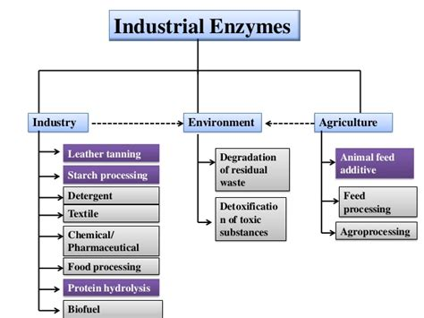 improvement of oil production using microbial enzymes picture 9
