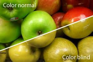 color blindness cure picture 2