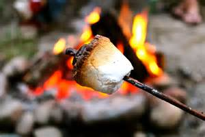 marshmallow roast picture 5