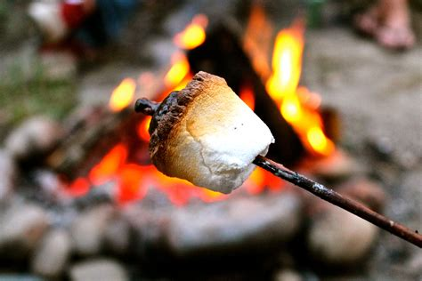 cooking marshmallows picture 10