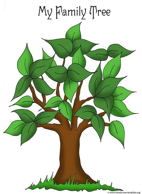 where can you buy the life tree purify picture 6