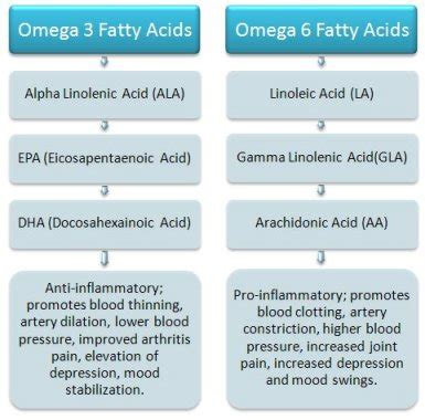 omega 3 fatty acids and weight loss picture 6