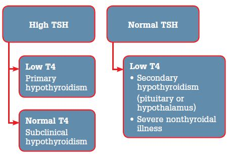 hypothyroid normal tsh picture 1