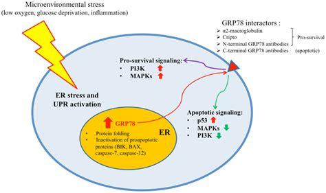 ab slim medicine study picture 15