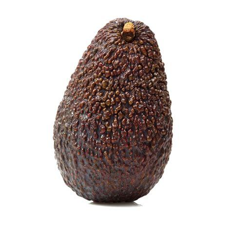avocado wholesale in philippine picture 13