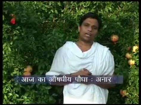 acharaya bal krishan remedies for stomach pain picture 5