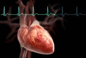 effects of exercise on heart rate and blood pressure picture 6