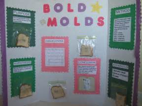 science fair projects yeast picture 5