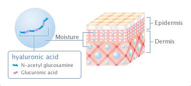 hylaronic acid for skin picture 11