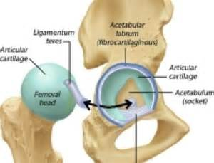 joint impingement syndrome picture 11