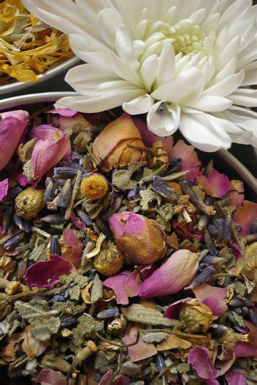 herbal medicine zeman picture 17