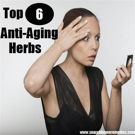 aging herbs picture 7
