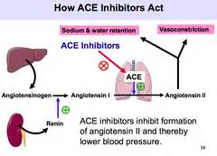 high cholesterol ace inhibitors picture 5