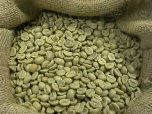 green coffee bean natural picture 9