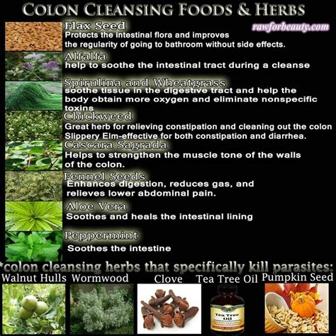 colon cleansing diet picture 8