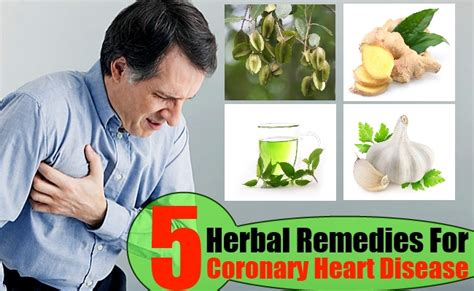 herbal remedies for health problems picture 17