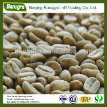 green coffee bean max suppliers in south africa picture 3