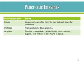 how to lower liver enzymes picture 3