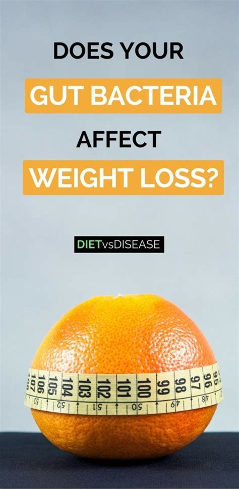 does bacteria causes weight gain picture 5