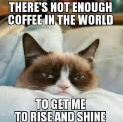 joc cu caffeine picture 1