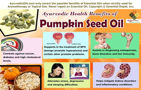 pumpkin seed oil for penis picture 9