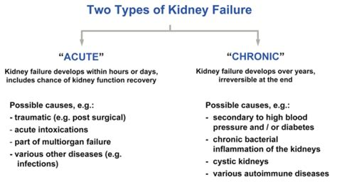 Kidney failure due to high blood pressure picture 3