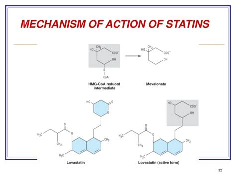 cholesterol statin picture 6