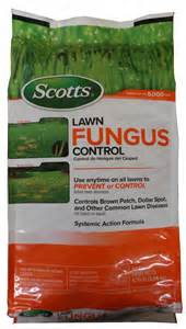 lawn fungus control picture 7
