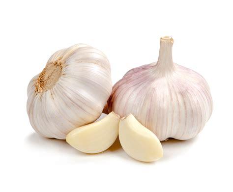 garlic weight gain picture 1