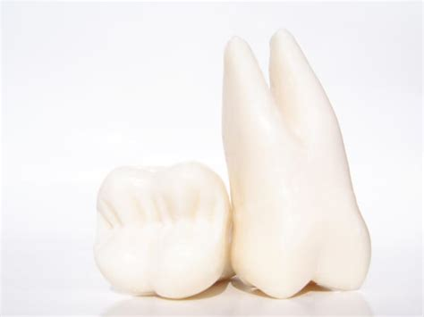 can teeth cause neck pain picture 7