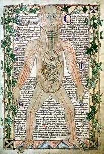 herbal healer picture 5