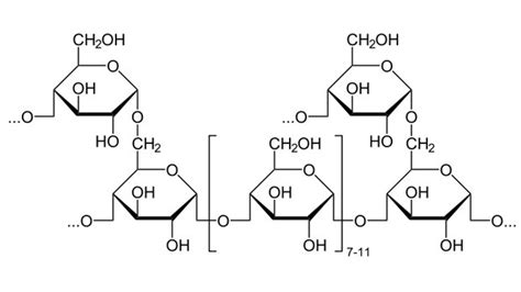 acid hydrolysis of starch picture 10
