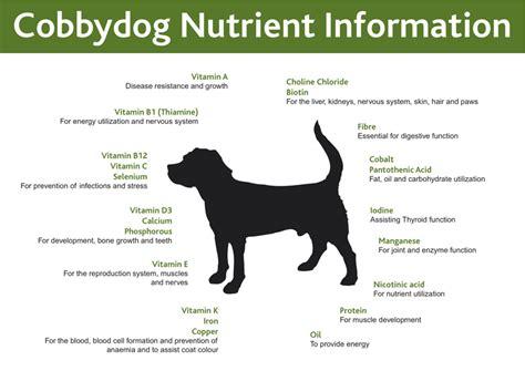 pet diet information picture 5