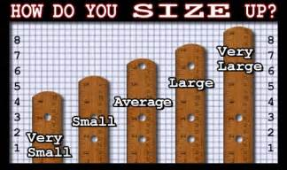 what is an average sized penis for a picture 6