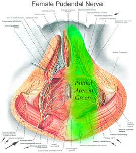 gastrointestinal back pain picture 6