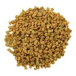 bulk fenugreek seed picture 3