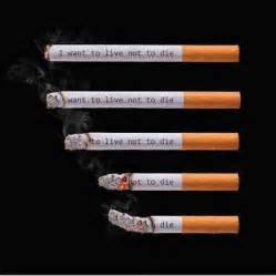 facts abput why you shouldn't smoke picture 14