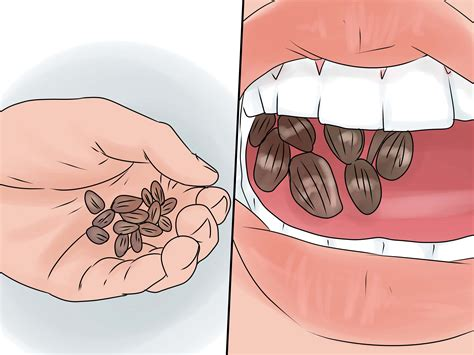 can sunflower seeds break your teeth or mess picture 9