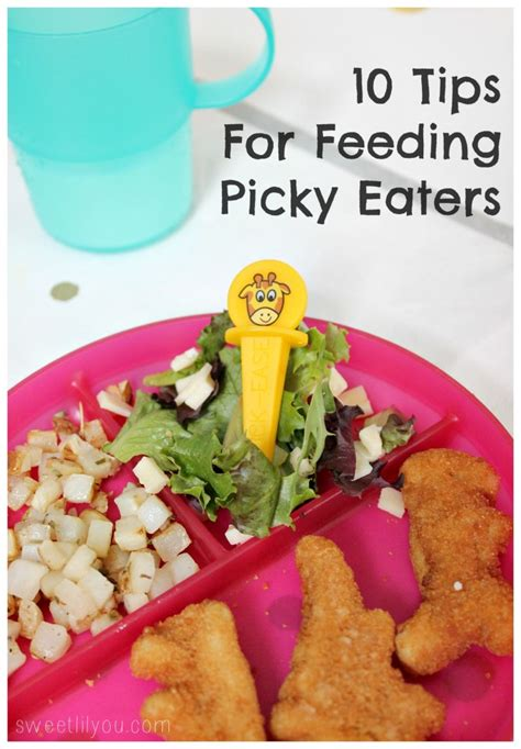 diet ideas for picky preschoolers picture 10